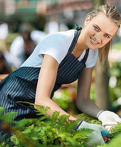 Empresa de jardiner a y mantenimiento de jard nes en madrid - Trabajo de jardineria en madrid ...