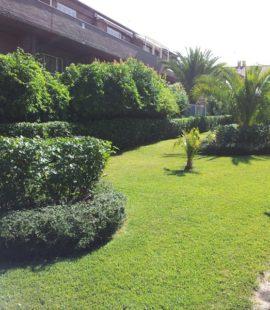 Mantenimiento de jardin Comunidad de Propietarios