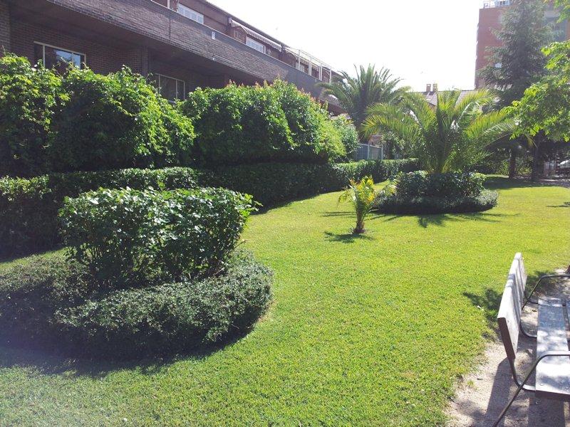 Empresa de jardiner a y mantenimiento de jard nes en madrid - Jardines y exteriores ...