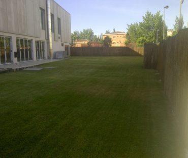 Mantenimiento jardín exterior Polideportivo