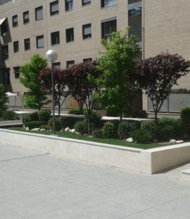 Mantenimiento jardin comunidad vecinos